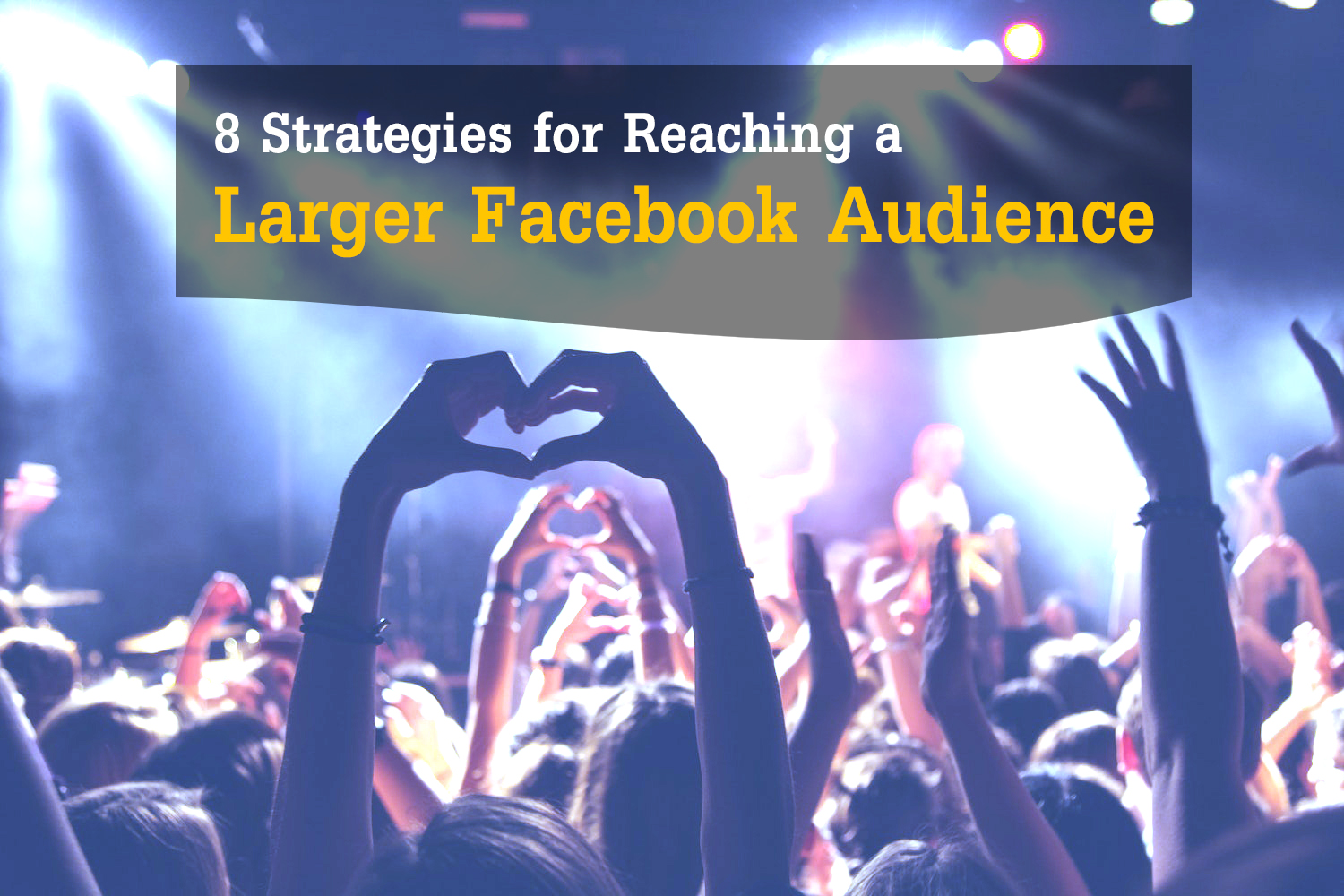 Larger Facebook Audience