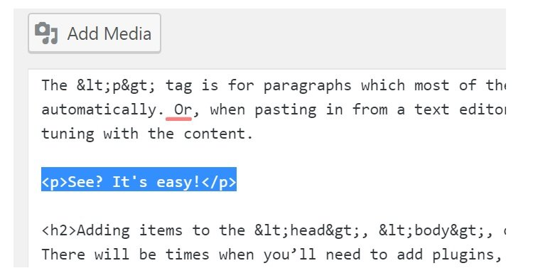 Paragraph Tags