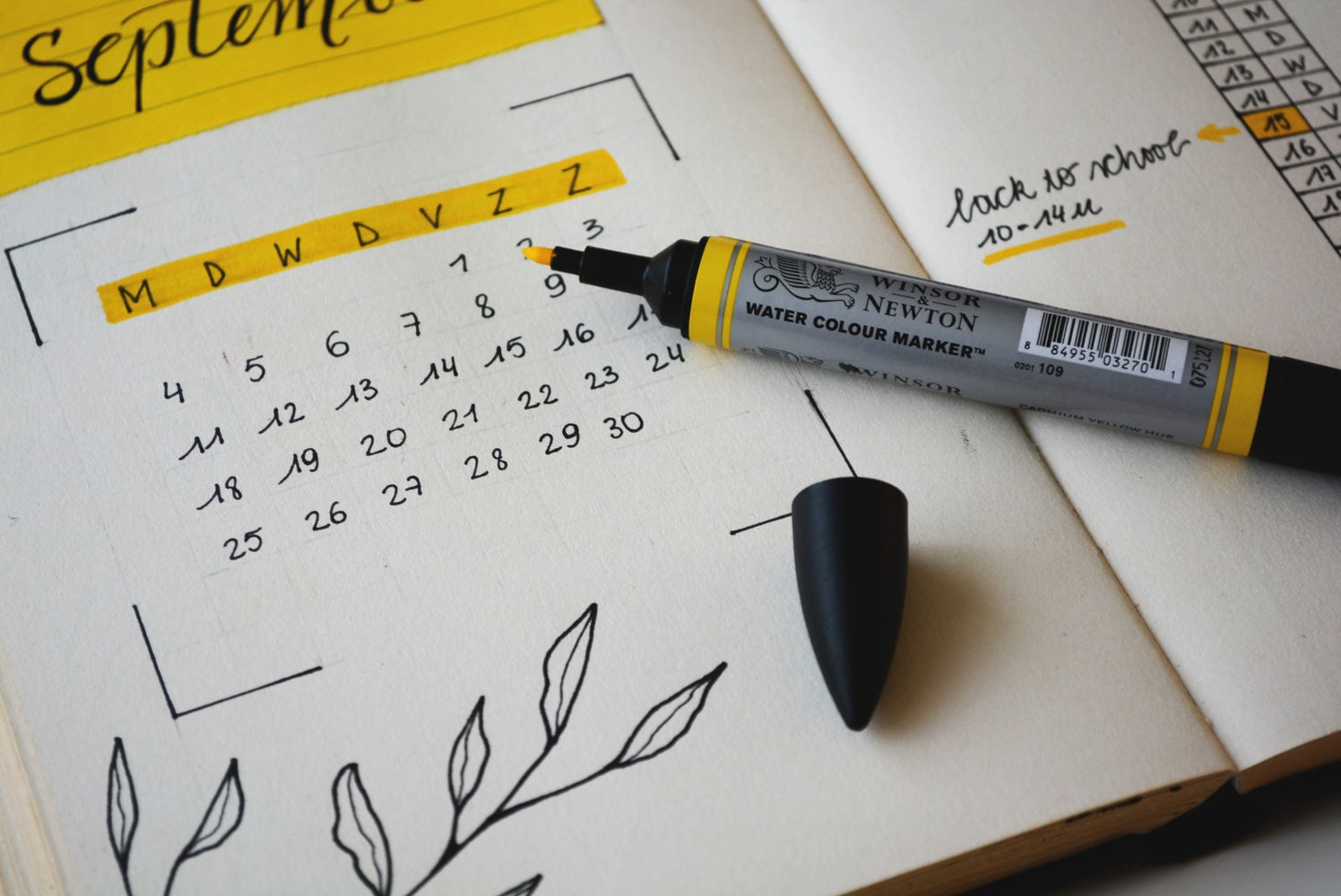 """Content Frequency: We Answer """"How Often Should I Publish a Blog?"""""""